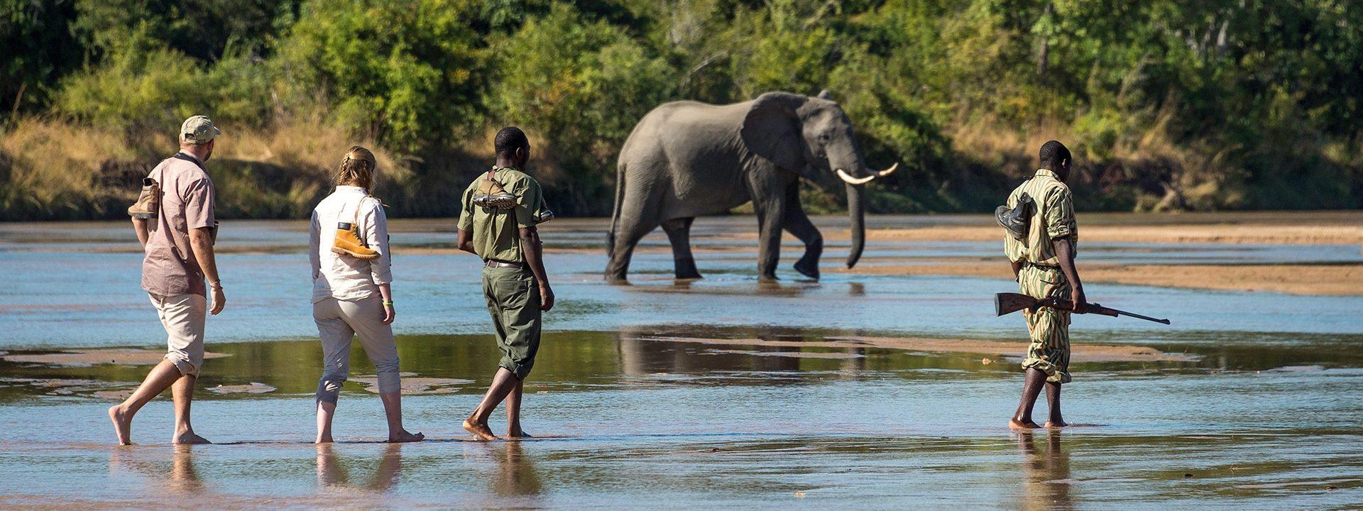 Kafue Safari Zambia