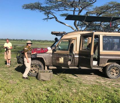 Tarangire safaris