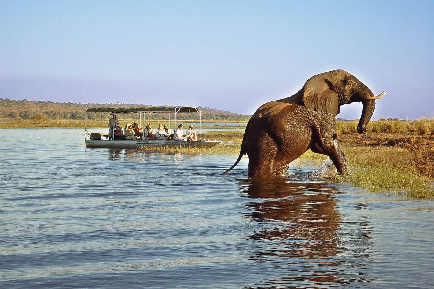 Lower Zambezi Safari
